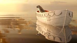 Fantastische avonturenfilm Life of Pi zaterdag te zien op België Eén