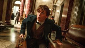 Fantasyfilm Fantastic Beasts and Where to Find Them maandag te zien op Net5