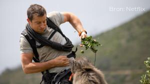 Nieuw op Netflix: Animal on the Loose: A You vs. Wild Movie vanaf dinsdag te zien