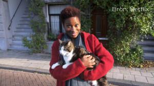 Nieuw op Netflix: Poeslief: een ode aan de kat vanaf zaterdag te zien