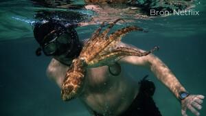 Recensie: My Octopus Teacher is Netflix-docu van bijna buitenaardse proporties